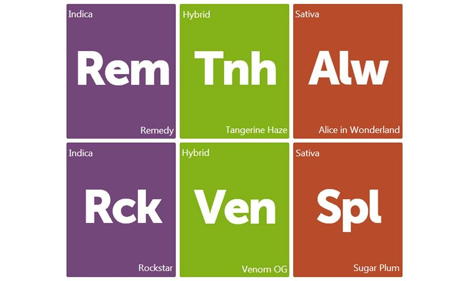 New Strain Alert: Remedy, Tangerine Haze, Alice in Wonderland, Rockstar, Venom OG, and Sugar Plum