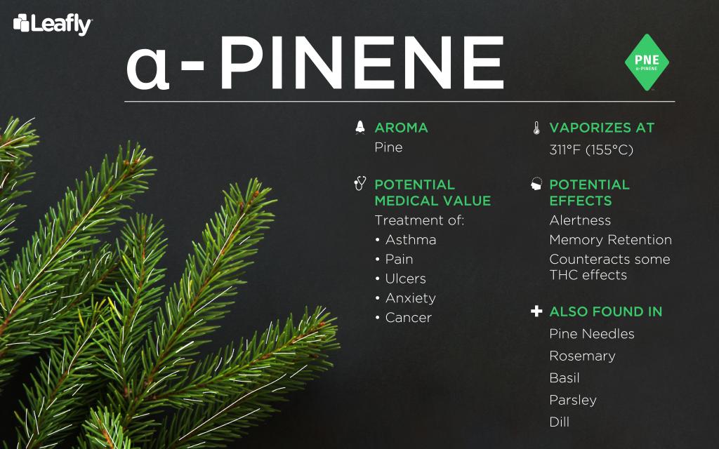 weed terpene pinene