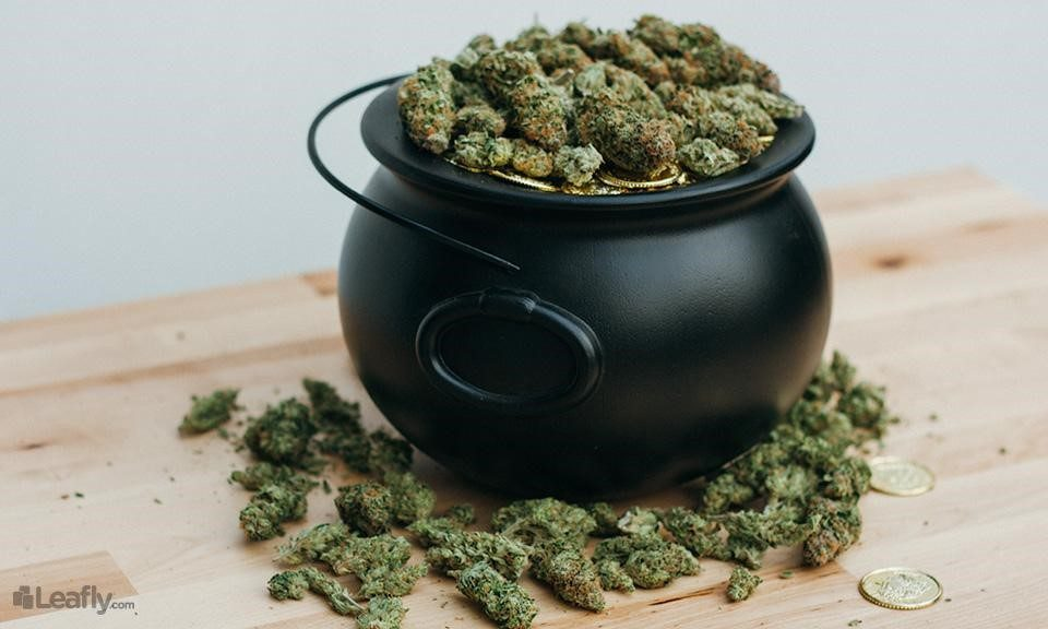 Luck o' the Irish: 15 'Green' Strains to Help You Celebrate St. Patrick's Day