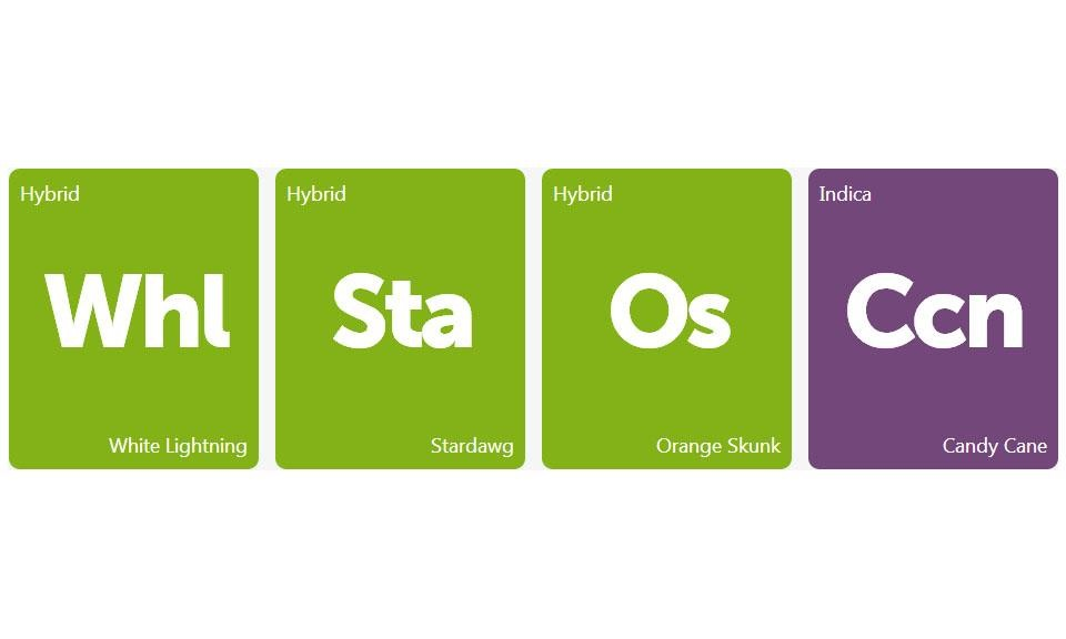 New Strains Alert: White Lightning, Stardawg, Orange Skunk, and Candy Cane
