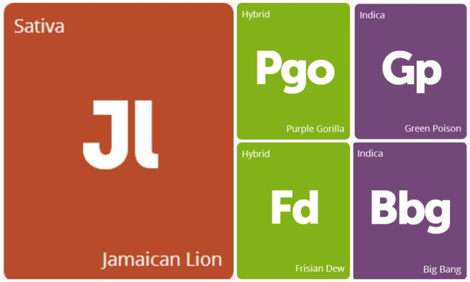 New Strains Alert: Big Bang, Frisian Dew, Green Poison, Jamaican Lion, and Purple Gorilla