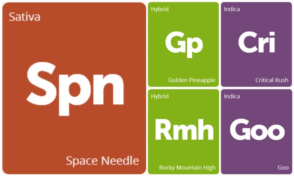 New Strains Alert: Critical Kush, Space Needle, Goo, Golden Pineapple, and Rocky Mountain High