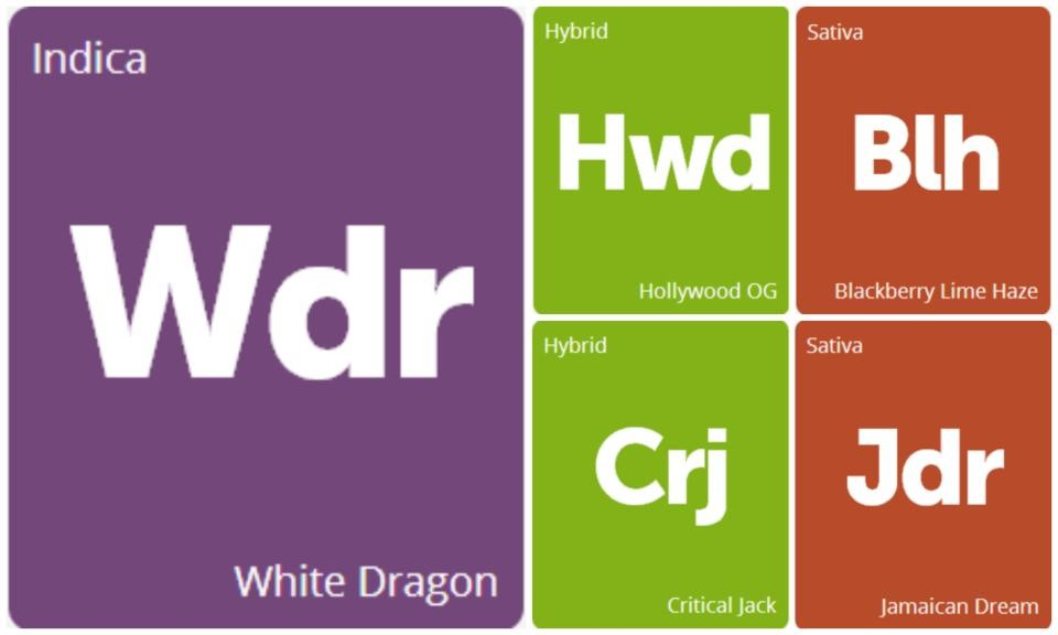 New Strains Alert: Hollywood OG, Critical Jack, Blackberry Lime Haze, Jamaican Dream, and White Dragon