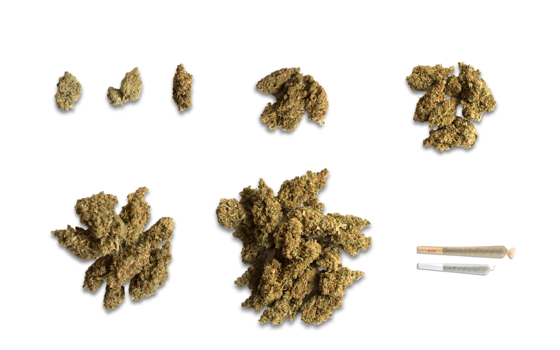 What Does One Gram of Cannabis Look Like? A Visual Guide to Cannabis  Quantities | Leafly