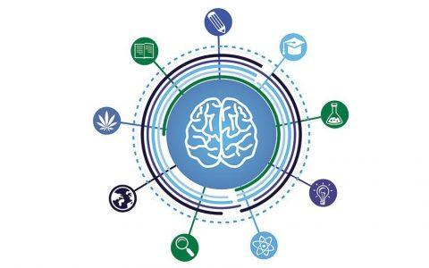 El Cannabis y la Meditación: las Mejores Prácticas para una Mente Elevada - Leafly 3