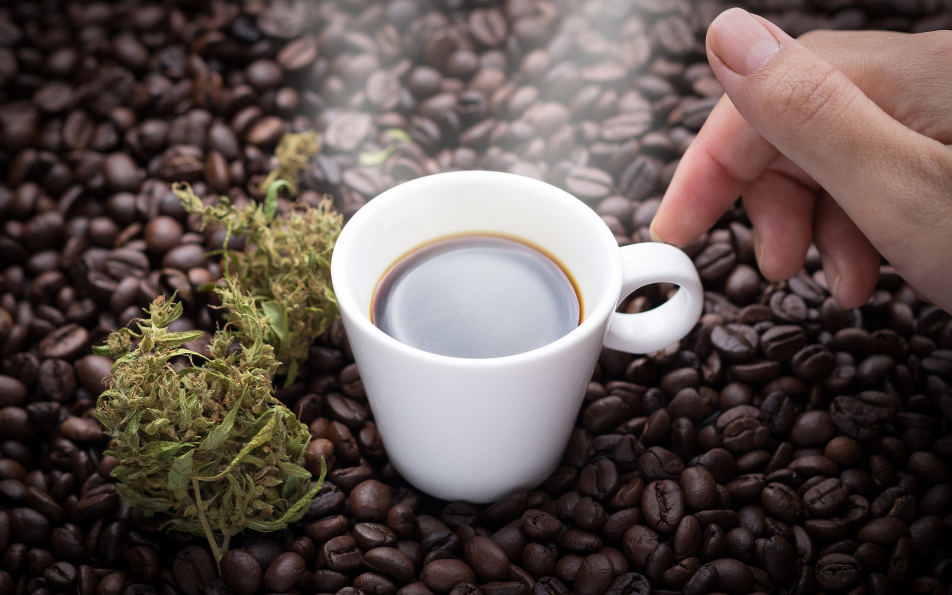 The Leafly Guide to Pairing Marijuana and Coffee | Leafly