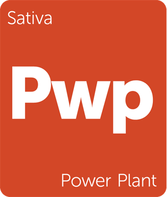 Leafly Power Plant sativa cannabis strain tile
