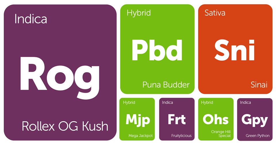 New Strains Alert: Rollex OG, Sinai, Puna Budder, Orange Hill Special, and More
