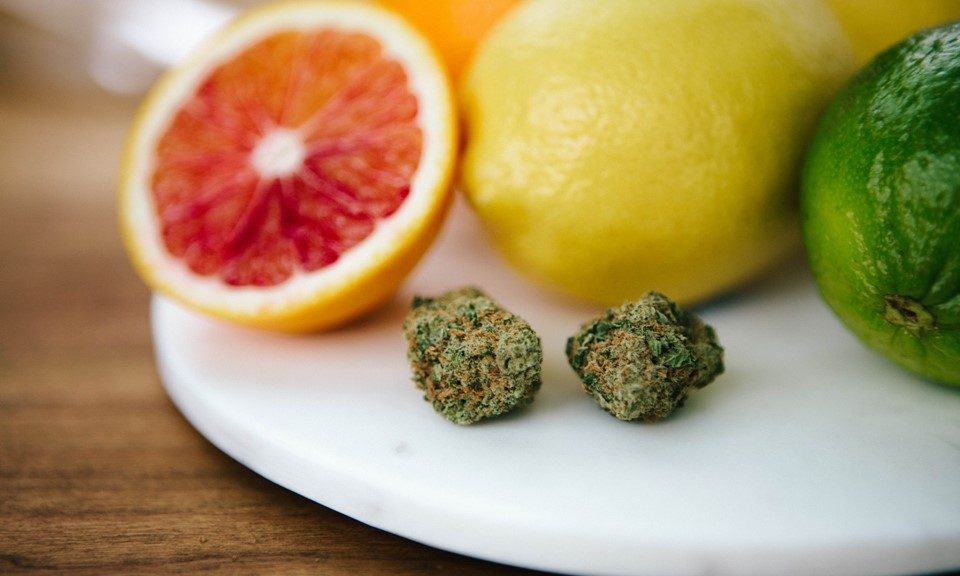 What Is Limonene and What Are the Benefits of This Cannabis Terpene?