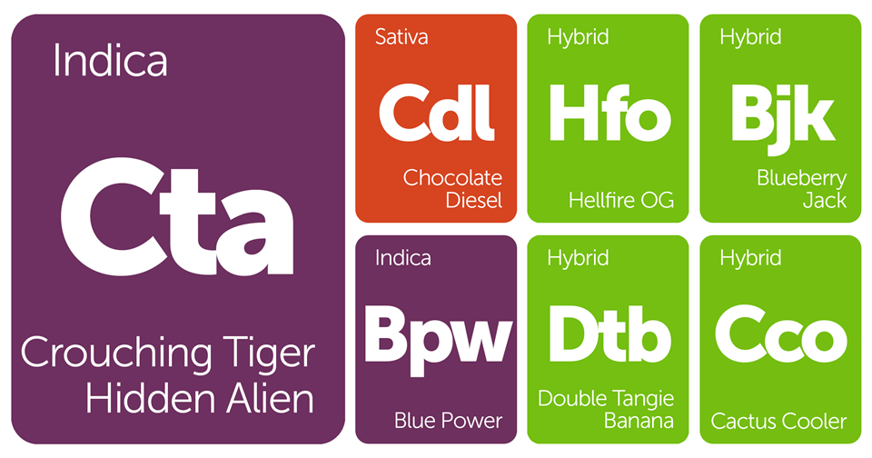 New Strains Alert: Blueberry Jack, Hellfire OG, Double Tangie Banana, and More
