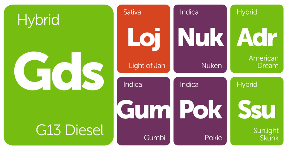 New Strains Alert: Gumbi, Pokie, Light of Jah, G13 Diesel, and More