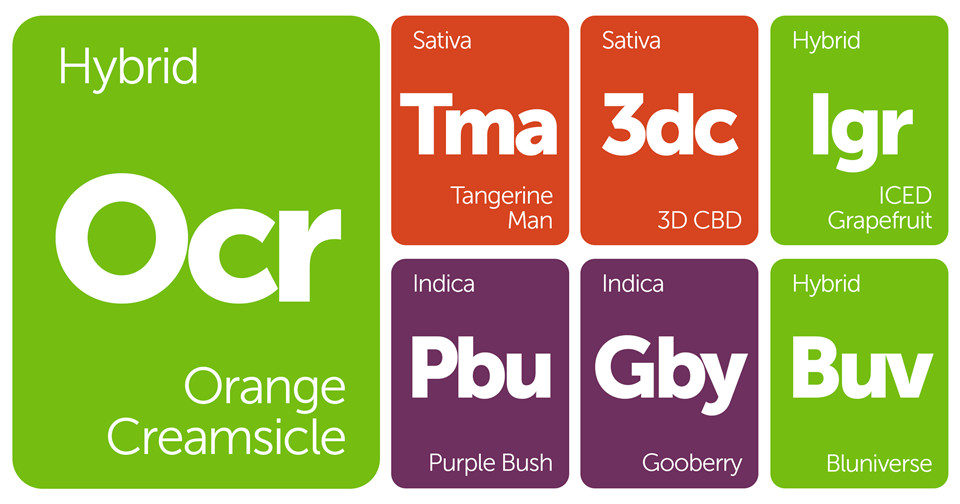 New Strains Alert: Orange Creamsicle, Bluniverse, ICED Grapefruit, 3D CBD, and More