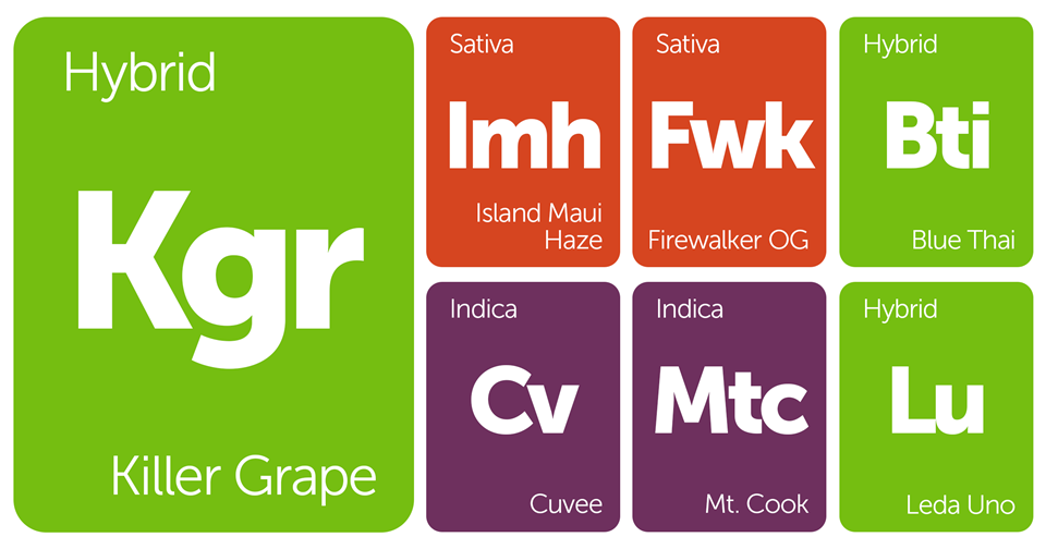 New Strains Alert: Firewalker OG, Killer Grape, Island Maui Haze, Mt. Cook, and More