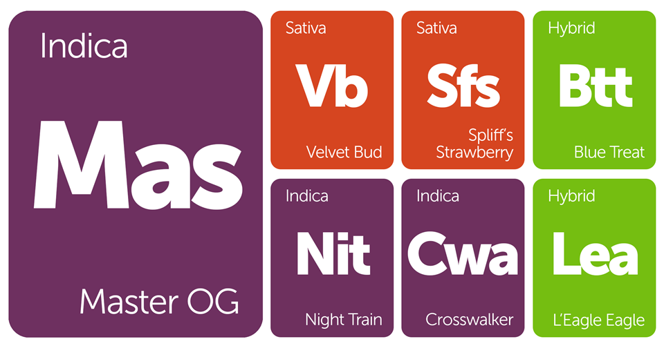 New Strains Alert: Master OG, Velvet Bud, Crosswalker, and Night Train