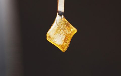 Walmart Is Selling a $299 Cannabis Rosin Press, So We Bought One