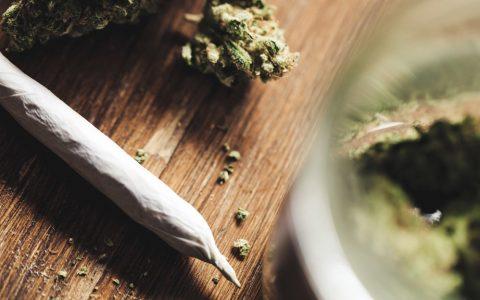 cannabis-gateway-drug