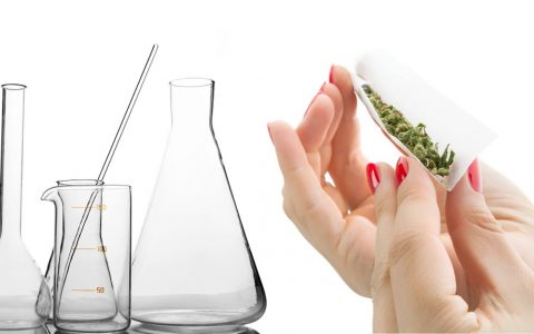 cannabis science 101 the physics and chemistry of the joint