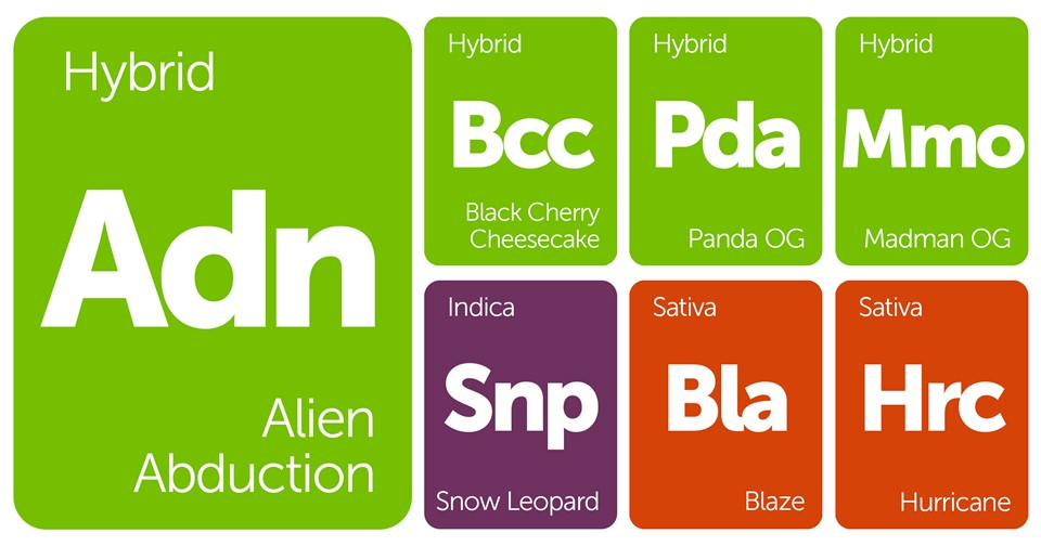 New Strains Alert: Alien Abduction, Snow Leopard, Panda OG, Madman OG, and More