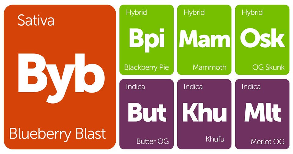 New Strains Alert: Butter OG, Blackberry Pie, Khufu, Mammoth, and More