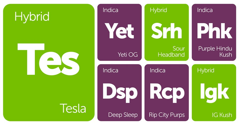 New Strains Alert: Tesla, Yeti OG, Sour Headband, Purple Hindu Kush, and More