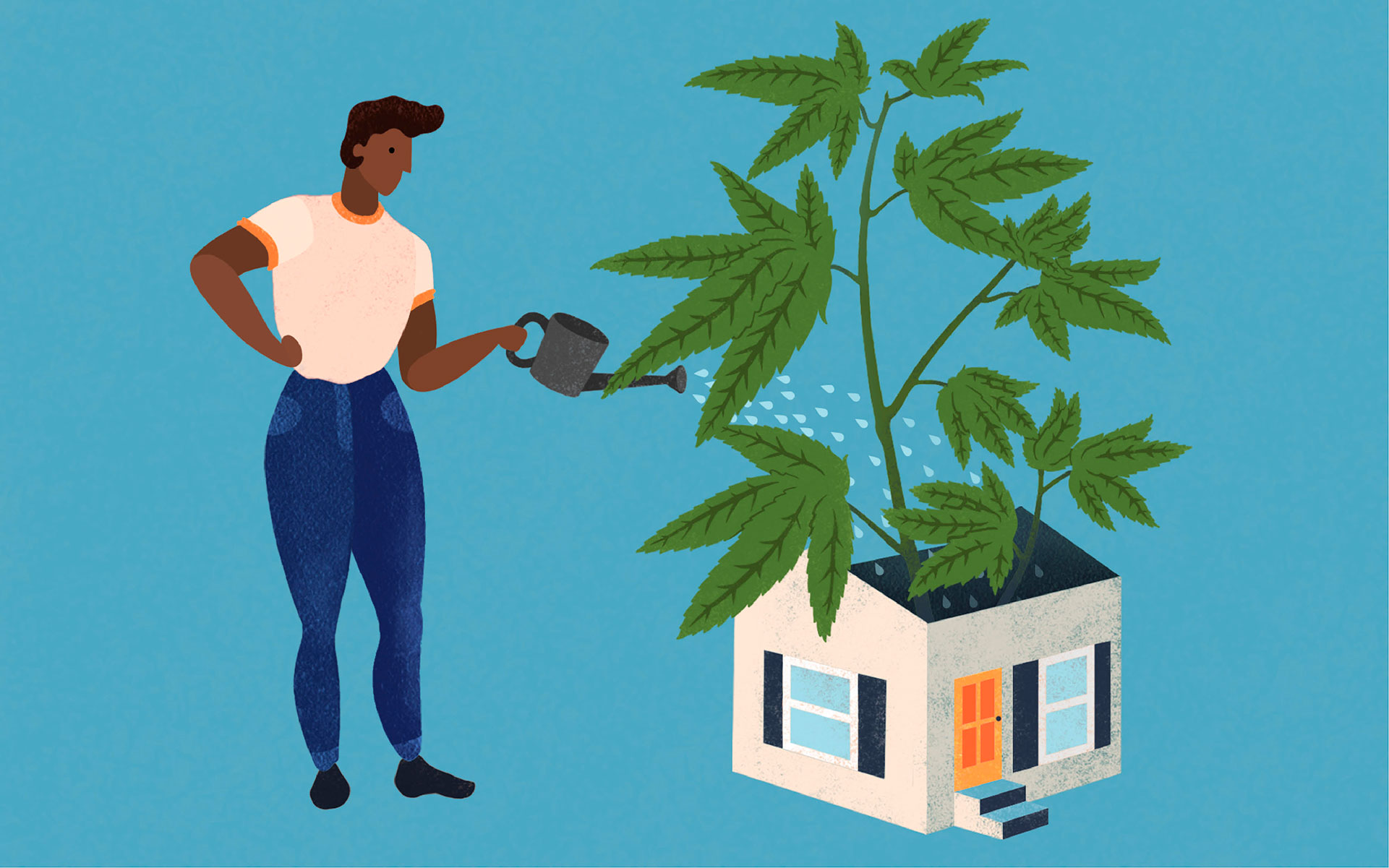 How to Grow Marijuana Indoors: For Beginners | Leafly