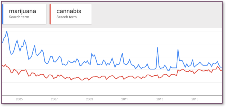 Marijuana vs Cannabis Search Trends in Google