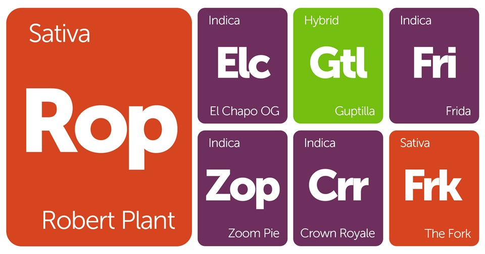 New Strains Alert: Robert Plant, Zoom Pie, Frida, and More
