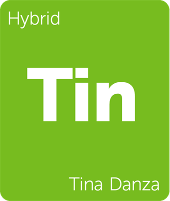 Leafly Tina Danza hybrid cannabis strain tile