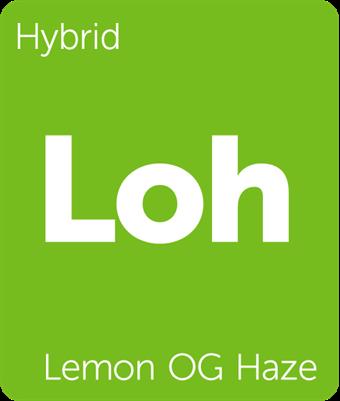Leafly Lemon OG Haze hybrid cannabis strain tile