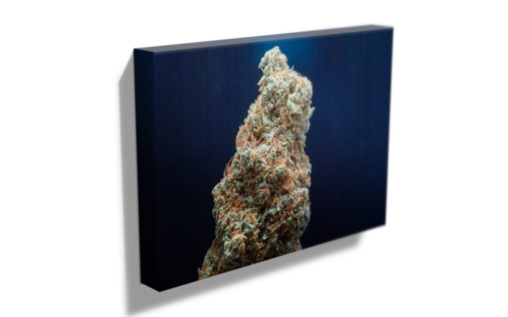 deals-products-fine-art-canvas