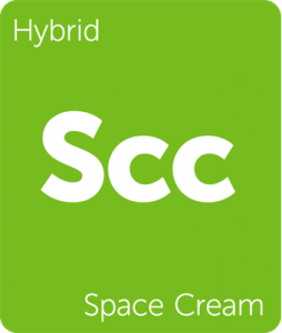 Leafly Space Cream hybrid cannabis strain