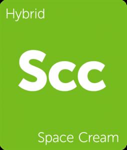 New Strains Alert: Space Cream, Mother's Milk, Pink Lemonade