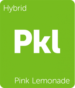 Leafly Pink Lemonade hybrid cannabis strain