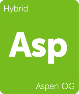 Leafly Aspen OG hybrid cannabis strain