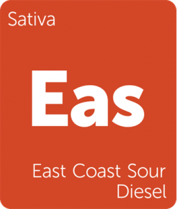 Leafly East Coast Sour Diesel sativa cannabis strain