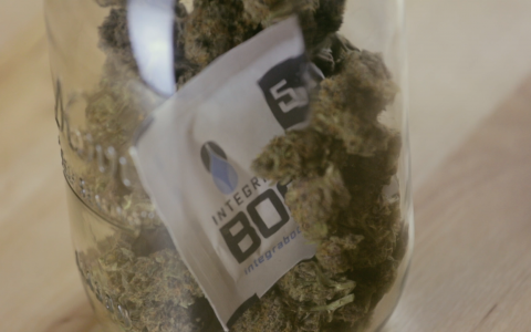 How To Get Rid Of The Smell Of Marijuana Inside Leafly