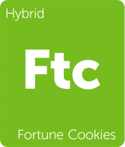 Leafly Fortune Cookies hybrid cannabis strain