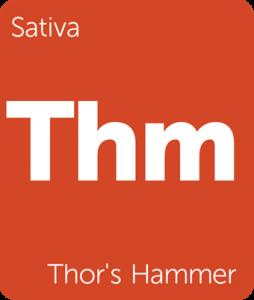 Leafly Thor's Hammer sativa cannabis strain