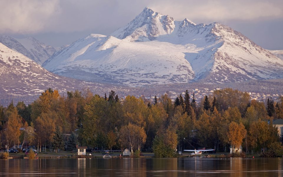 State of the Leaf: Alaska's First Legal Cannabis Harvest Just Began. It's Already Stalled.