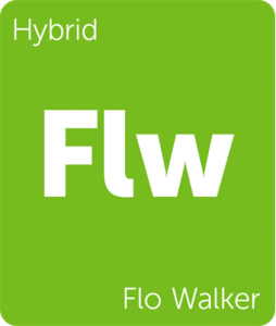 Flw Flo Walker