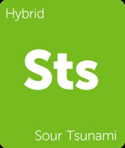 Leafly Sour Tsunami hybrid cannabis strain