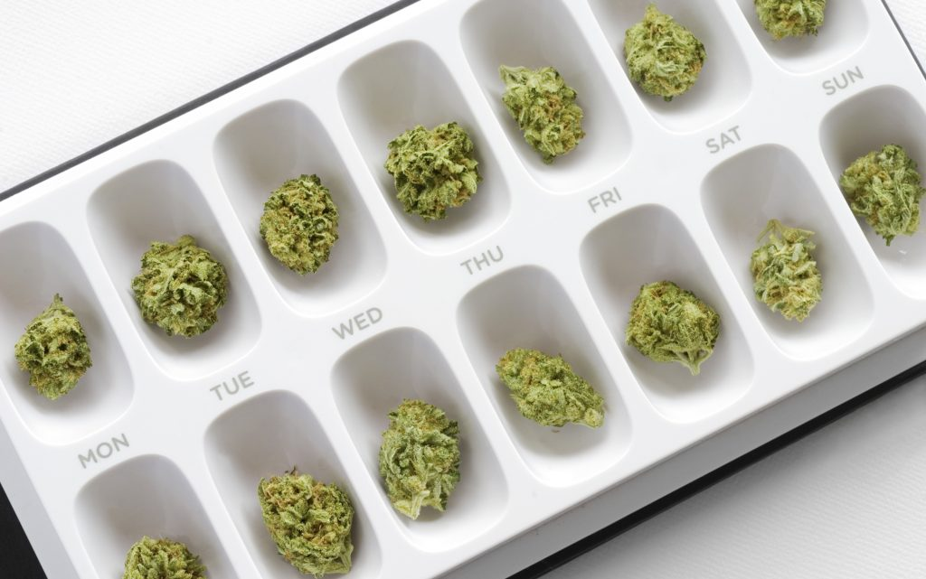Marijuana buds organized into a weekly pill case.