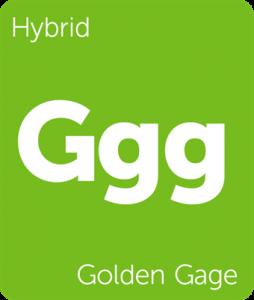 Leafly Golden Gage hybrid cannabis strain