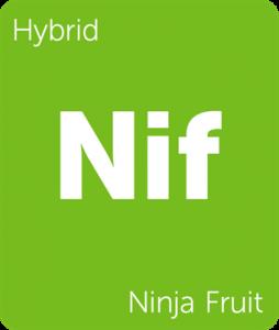 Leafly Ninja Fruit hybrid cannabis strain