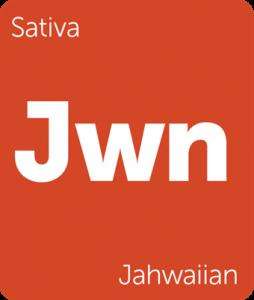 Leafly Jahwaiian sativa cannabis strain