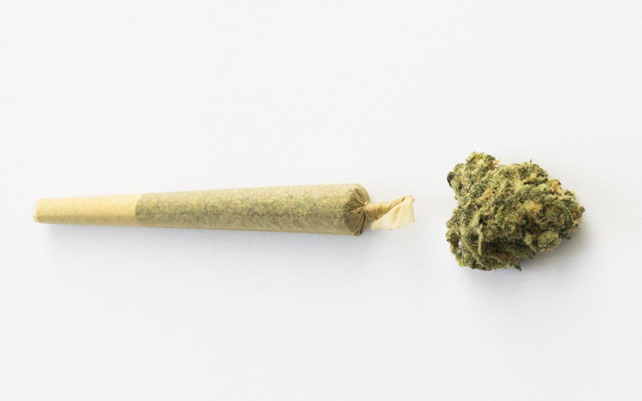 EDUCATION | MCEC – Medical Cannabis Educational Center