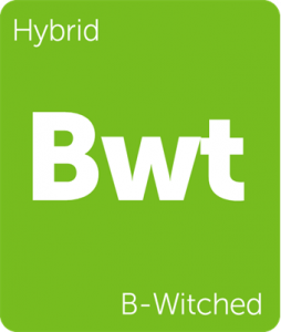 Leafly B-Witched hybrid cannabis strain