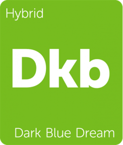 Dkb Dark Blue Dream