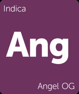 Ang Angel OG