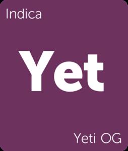 Leafly Yeti OG indica cannabis strain